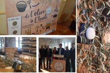 قم بالتركيز ع لىFête de l'Olive des Collines niçoises